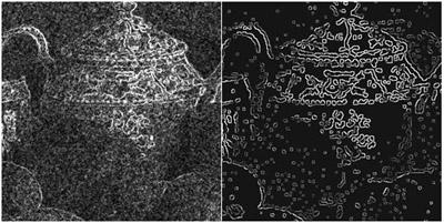 Neural Edge Enhancer for Supervised Edge Enhancement from Noisy Images